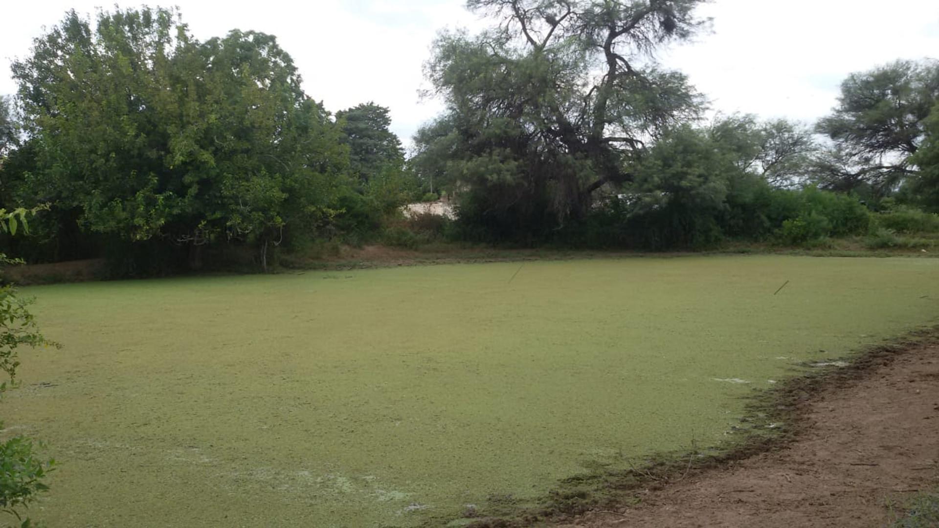 Bañado De Soto 100 - $ 65.000 - Campo en Venta