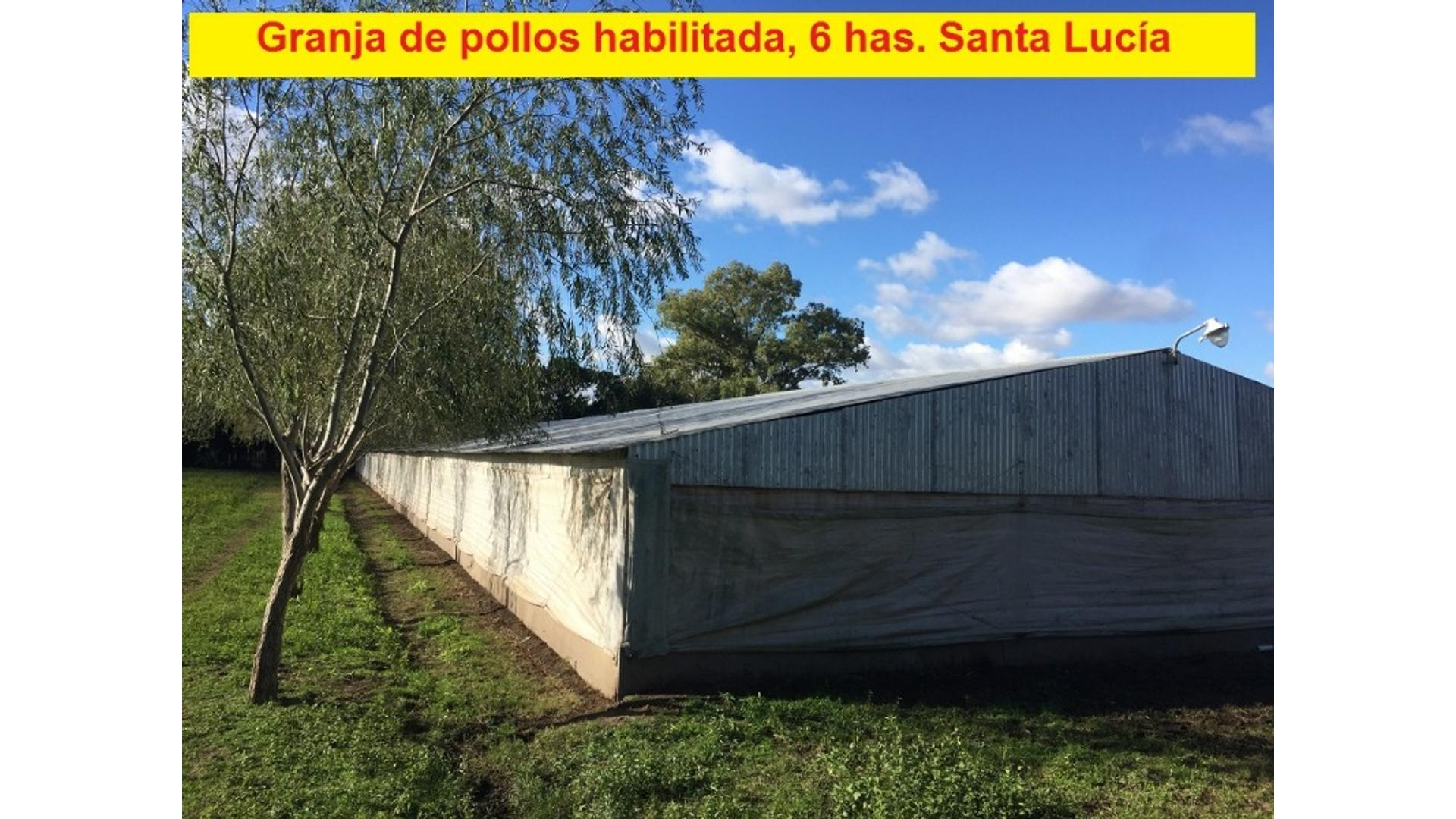 Rural 2000 - U$D 260.000 - Campo en Venta