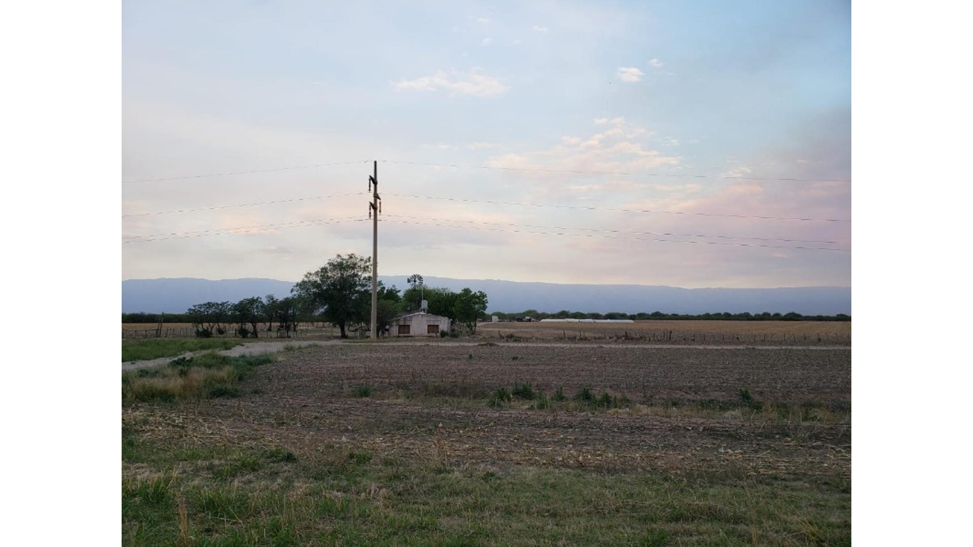85 Has Ruta 148 Limite Cordoba San Luis 100 - Consulte precio - Campo en Venta