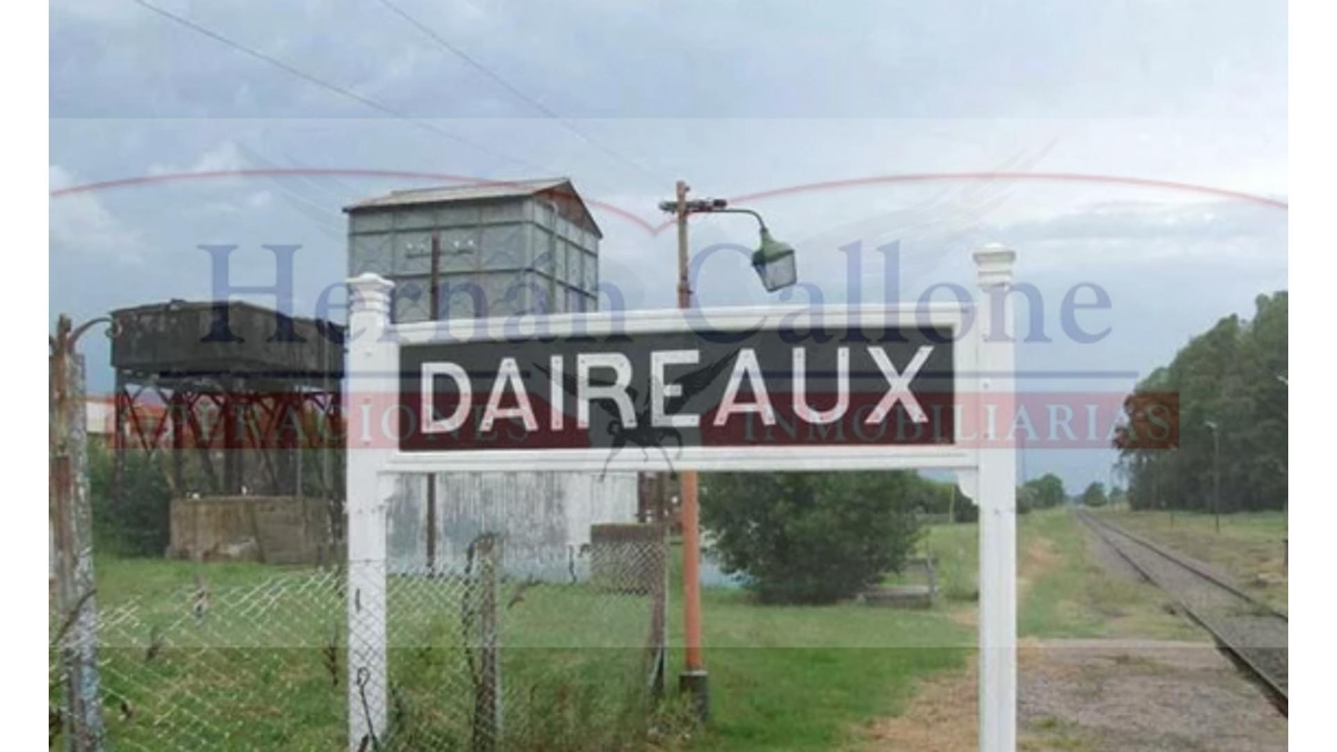 Daireaux 100 - U$D 6.600.000 - Campo en Venta