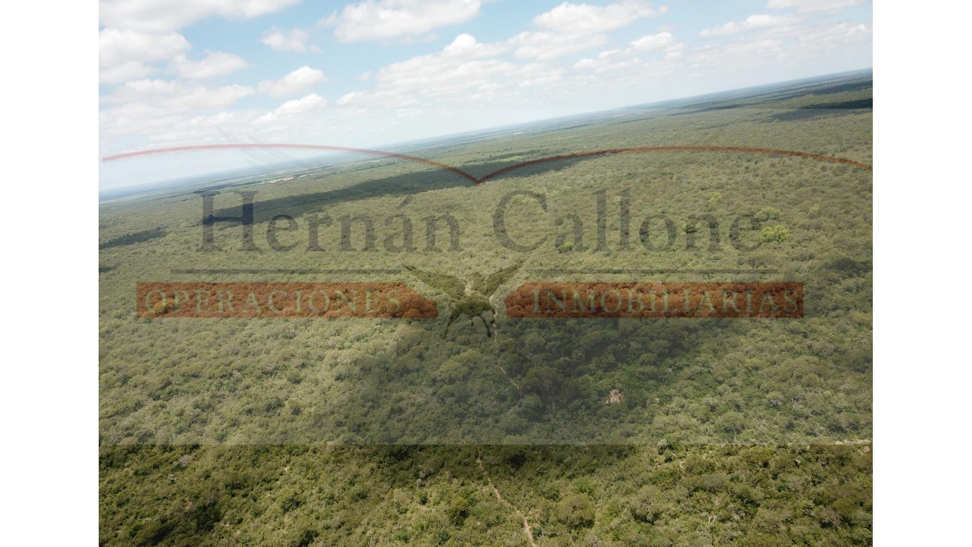 Camino Rural, A 30 Kms. De Villa De María 100 - U$D 390.000 - Campo en Venta