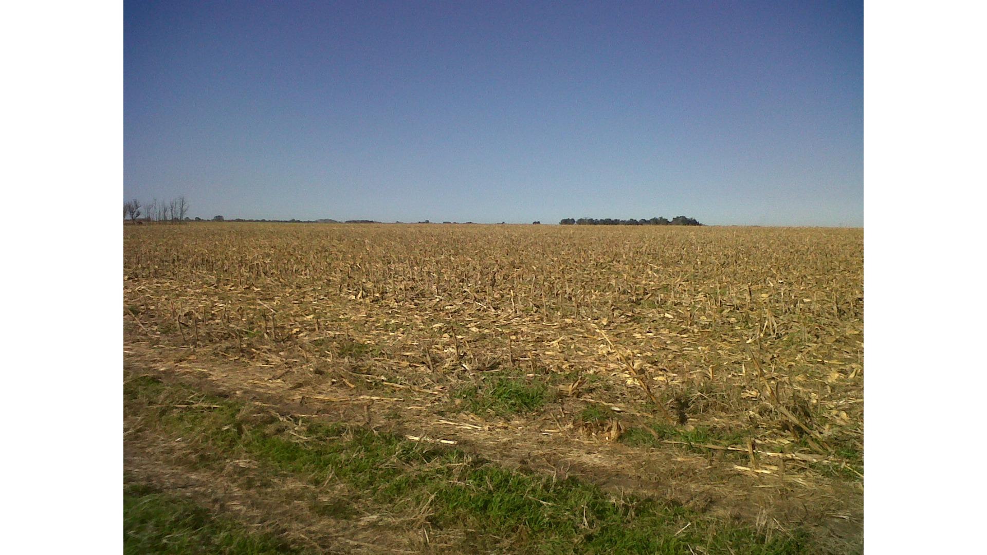 Rural 6000 - U$D 475.000 - Campo en Venta